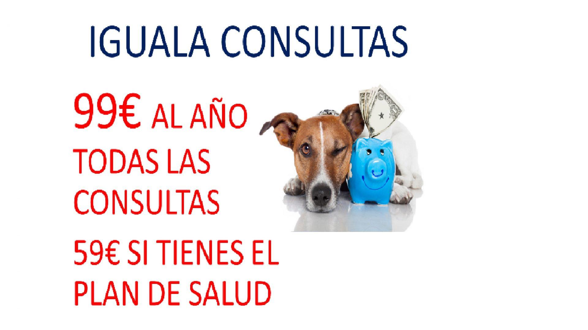 IGUALA DE CONSULTAS