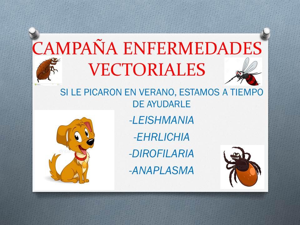 Enfermedades Vectoriales